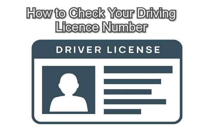 Check Your Licence Number