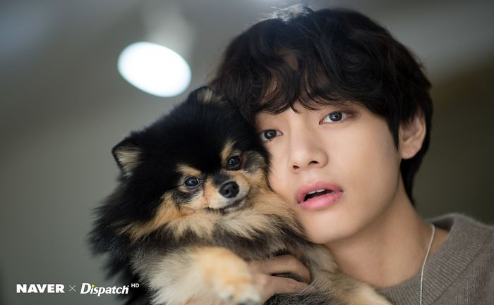 BTSwithyeontan